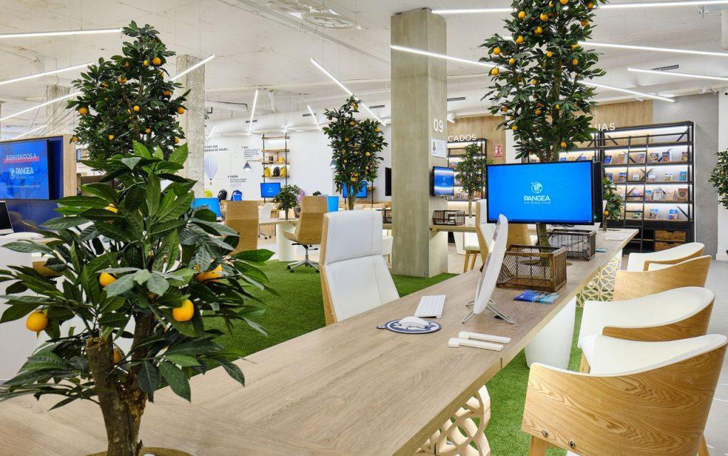 PANGEA inaugura nueva tienda en Valencia/Img. PANGEA